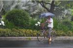"""受台风""""摩羯""""影响 浙江全省暴雨面积达4万平方公里"""