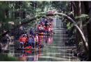文化节庆,红色旅游,乡村民俗…… 过去7天,你去哪里打了卡?