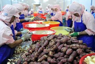 农业部:确保农产品初加工补助政策实施阳光操