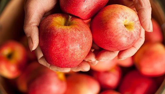 美国小孩为什么这么爱吃苹果?