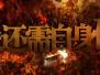 侠客岛:中纪委的新片透露了怎样的权力运行的秘密?