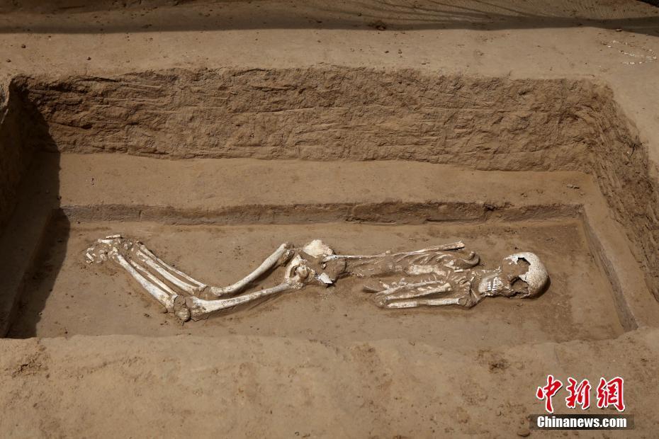 郑州西郊在建工地现30座古代墓葬 十多具尸骨姿态奇特 4月20日,河南郑州西郊以在建工地,发现东周古墓群,里边发掘出十多具尸骨姿态奇特。据郑州市文物考古研究院发掘项目负责人刘青彬介绍,目前已发现了古代墓葬30座,基本都是东周时期的墓葬,因为墓式的不同,有仰身直肢葬,有侧身屈肢葬,在棺椁倒塌之后,他的头部可能会受到挤压变形导致他的嘴巴张开。目前发掘工作还在进行中。 王中举 摄