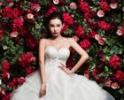 童菲婚纱写真