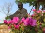 江苏首批将创建13家旅游风情小镇 快来看看都有哪些地方?