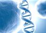 """找出""""与生俱来""""的隐患 基因检测为市民做""""预防"""""""