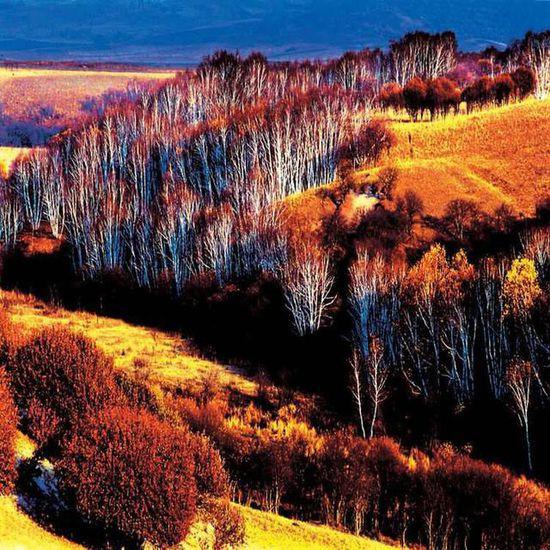 美到窒息!中国最美的十大勾魂景色