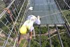 工人百米高空换玻璃