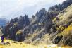 小五台山保护区 宛如野生动植物的天堂
