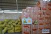 举报食药品重大违法线索 山东至少奖励30万