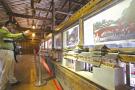 温州泰顺一文化礼堂有33座廊桥模型,成游客必打卡的景点