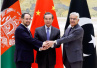 中国与这两个邻国的首次外长级对话,意义深远