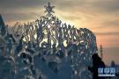 哈尔滨感受冰雕之美