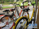 """已有""""黄蓝组合"""" 滴滴为何还要自建共享单车品牌?"""