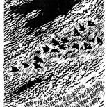 《迁徙与飞翔 》26cm×19cm