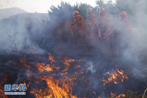 金沙线上娱乐官网:森林防火期要注意啥 这些你都知道吗?