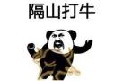 春节战场交锋秘籍!