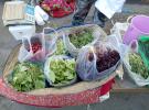 哈尔滨市民深爱的蘸酱菜比去年贵点 婆婆丁15块一斤