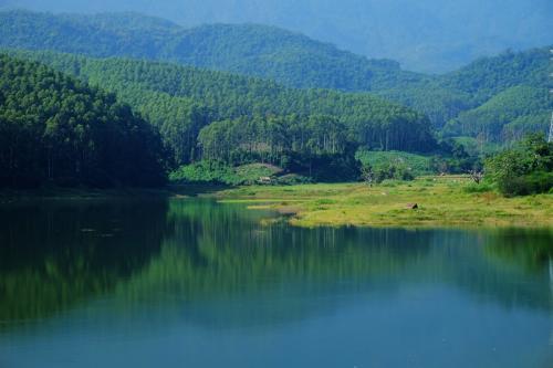 金沙国际娱乐网站:3月山东平均降水量27毫米,四大湖蓄水多11亿立方