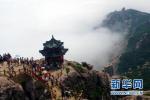 崂山迎春节后首个客流小高峰 万余人争睹崂山花海