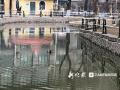 哈尔滨兆麟公园正式开园 鸳鸯悠闲散步小花栗鼠实力抢镜