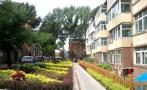沈阳沈北新区改造34个老旧小区 居民全程参与