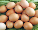 """蛋价破4?""""五一""""临近 鸡蛋价格触底反弹"""