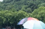 热化了!杭州最高温度持续35摄氏度以上