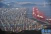 """前7月四川省与""""一带一路""""沿线国家和地区进出口增长超30%"""