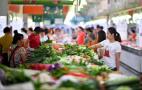 比去年同期上涨10.89% 今春菜价为何坚挺?
