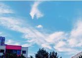 清凉时光且珍惜!周末高温来袭 6月2日郑州气温将达40℃