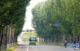 森林覆盖率30% 河北省为太行山披绿逾千万亩