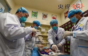 【央视快评】完善疫情防控体制机制 健全公共卫生应急管理