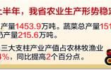 """河北经济半年报亮点解读 """"米袋子""""鼓鼓的 """"菜篮子""""满满的"""
