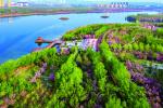 创城不止步 续写新篇章——2020年鹤壁市城市创建工作综述