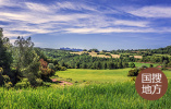 马富国在鹤壁市种业发展专题会议上强调 推动鹤壁种业高质量发展