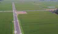 """河南叶县:""""藏粮于地、藏粮于技""""打造高标准农田示范区"""