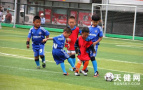 大连幼儿足球表演赛落幕 81支幼儿园代表队参赛