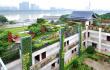"""福州大力绿化屋顶 九月前建成多个""""空中花园"""""""