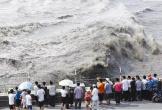 观潮有凶险!多图揭秘杭州防潮工作