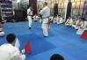 全国全接触空手道初级教练员、一级裁判员培训班在杭举行