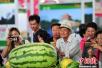第十届辽宁国际农业博览会:向智慧健康农业转身