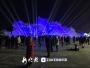 3万游客元旦假期逛哈尔滨太阳岛雪博会盛典