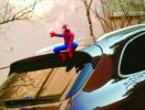 """车顶葫芦娃、豪车变""""神""""车......这样安全吗?"""