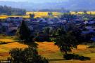 安徽皖南田园景色如画