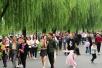 权威数据告诉你:这个长假,杭州招待了哪些客人