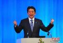 日本众院选举 执政联盟阻力小安倍有望连任