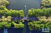 西湖边最迷人的一片绿荫将迁离:为地铁让路,4年后种类似树种