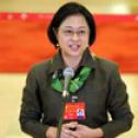 十九大台湾籍代表卢丽安