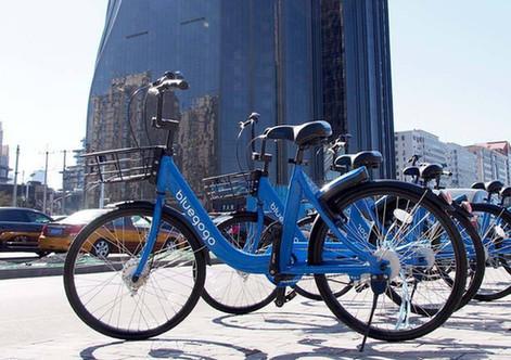共享单车企业倒没倒 都请把投放的车收好