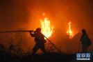 美加州南部突发林火